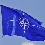 scoala NATO