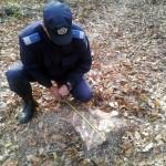 jandarmi în pădure
