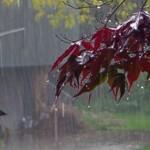 ploi-820x300