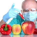 organisme-modificate-genetic-12245