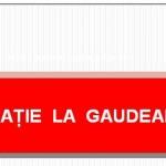 Invitatie Masa Rotunda Gaudeamus 2015 newsletter
