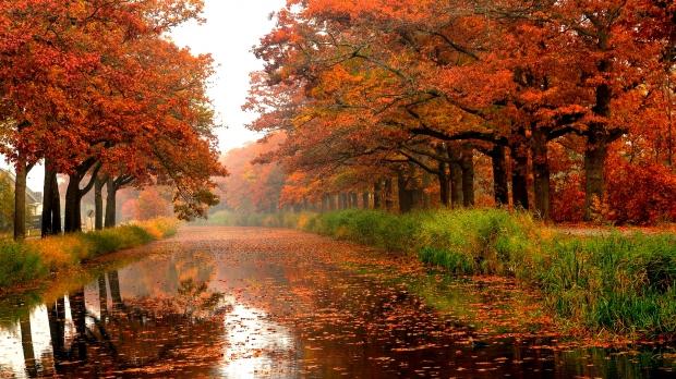 Foto: www.romaniatv.net