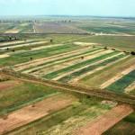 terenuri-agricole-700x415