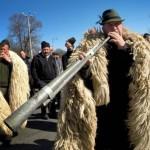 buletindecarei.ro-protest-ciobani-oieri-pastori