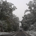 copaci-zapada-drum-ninsoare-iarna
