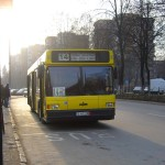 transport local tg mures