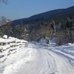 iarna foto  emanuela aranyos