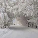 peisaj-de-iarna-superb