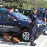 politie de frontiera