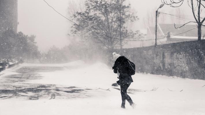 viscol iarna
