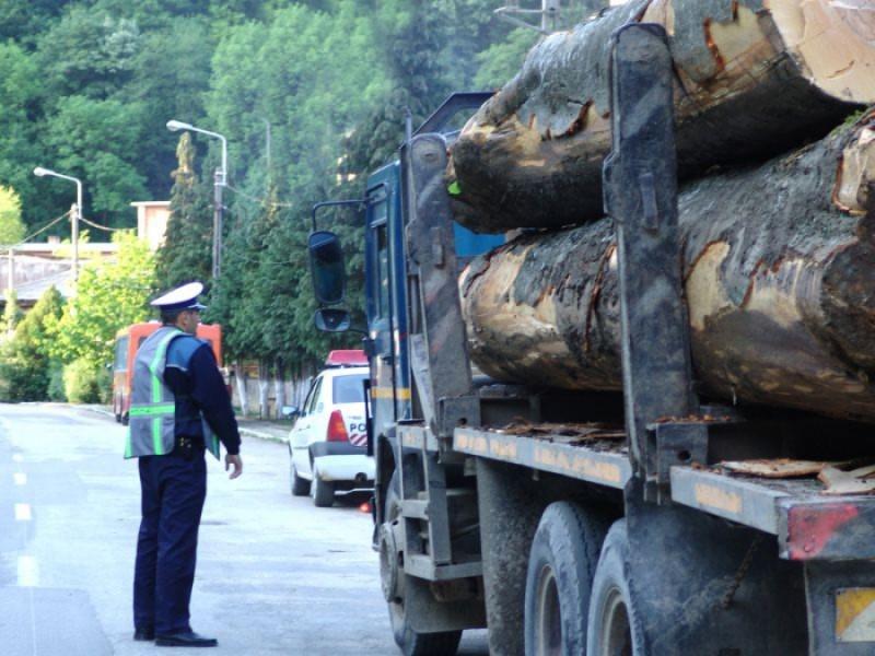 Foto: www.monitorulcj.ro