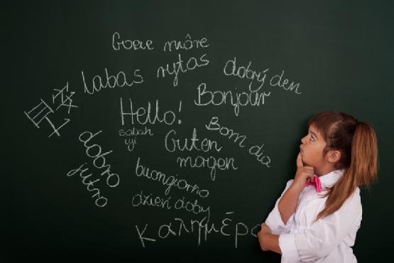 elevi limbi straine