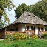 muzeul-satului