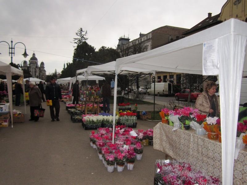 Piata flori1