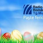 banner Pasti RTM 2016