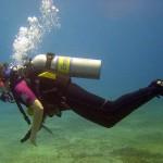 scufundari
