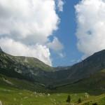 Foto:templulsecretelor.blogspot.com