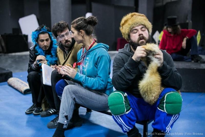 Foto: Teatrul Național Tîrgu-Mureș