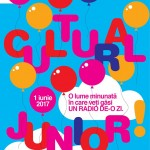 Vizual Cultural Junior