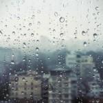 ploaie, picuri