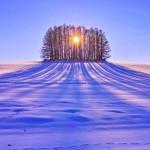 Foto: wpnature.com
