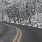 drum-de-iarna