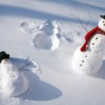 prognoza iarna om zapada