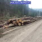 confiscat material lemnos politia romana