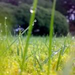 Foto: Zastavki.com