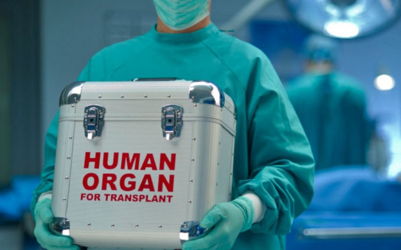 agentia de transplant