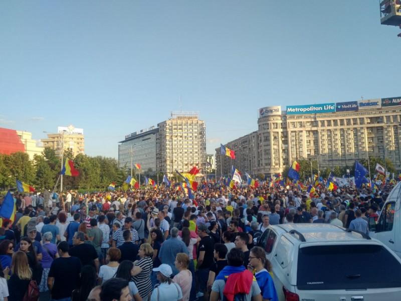 746219-1533937426-miting-diaspora-10-august-primii-protestatari-au-ajuns-in-piata-victoriei