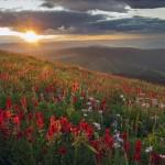 Foto: Sun Peaks Resort