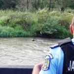 Sursa foto/video: Jandarmeria Harghita