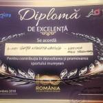 gala sporturilor diploma