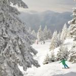 schi iarna