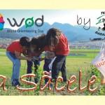 Ziua Mondială a Orientării Sacele