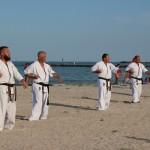 karate centura neagra