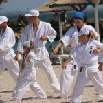 karate copii 2