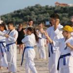 karate copii 3