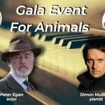 Ferma educațională a animalelor domestice salvate