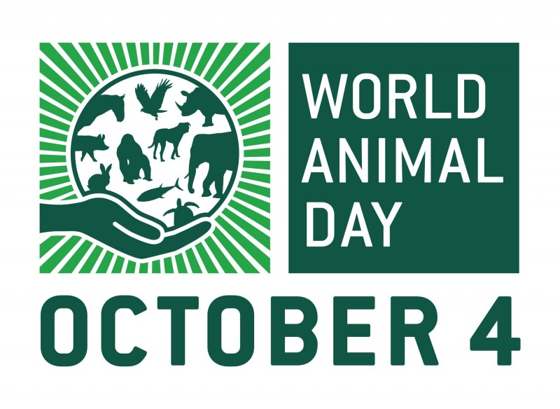 4 octombrie - World Animal Day