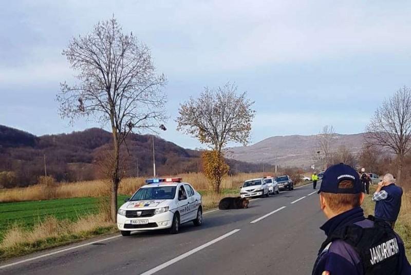 Foto: Regionala de Drumuri Braşov