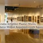 Asociatia Artistilor Plastici Mures