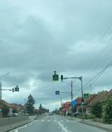 ursa foto: www.facebook.com/Esti-din-Sangeorgiu-de-Mures-daca--