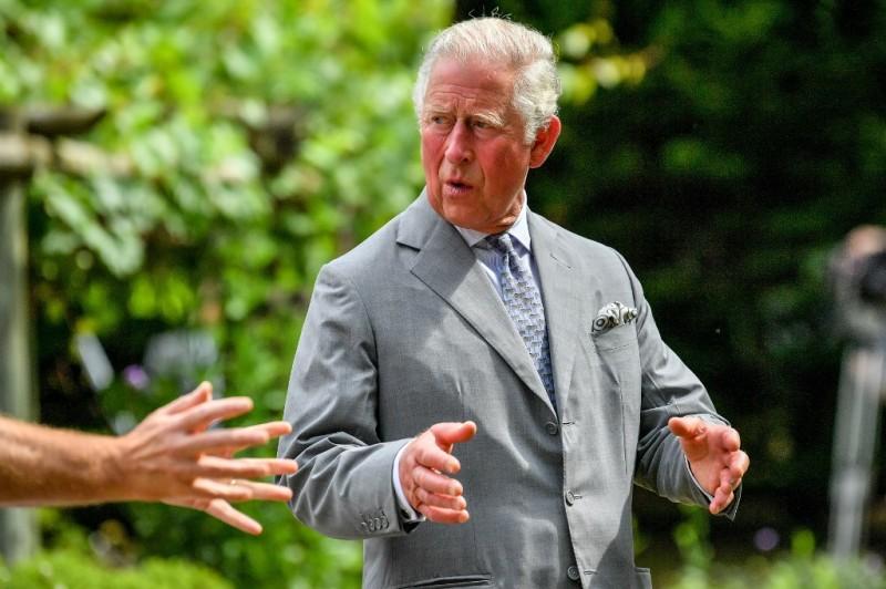 Prințul Charles Foto: Ben Birchall / POOL / AFP