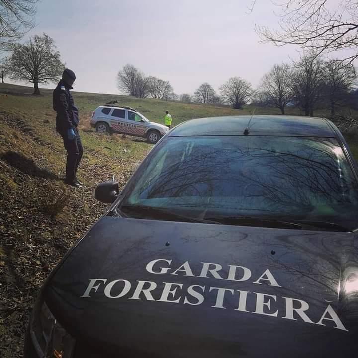 Foto: Garda forestieră Brașov