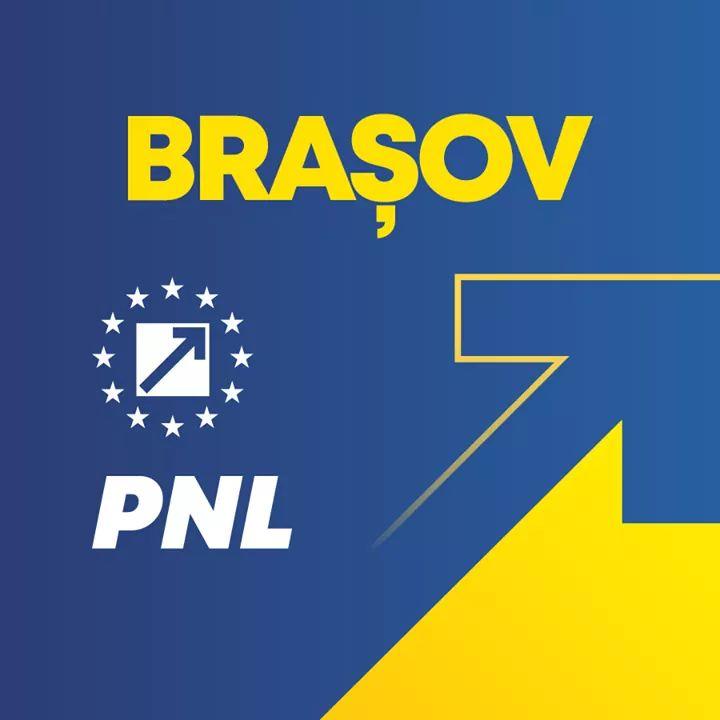 Logo PNL Brasov